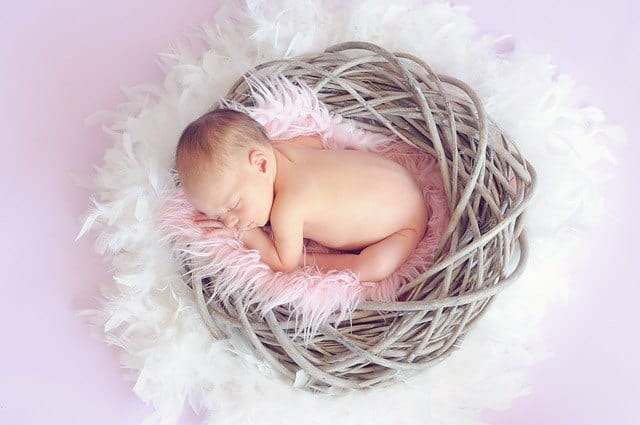 The picture of the baby sleeping in the nest.